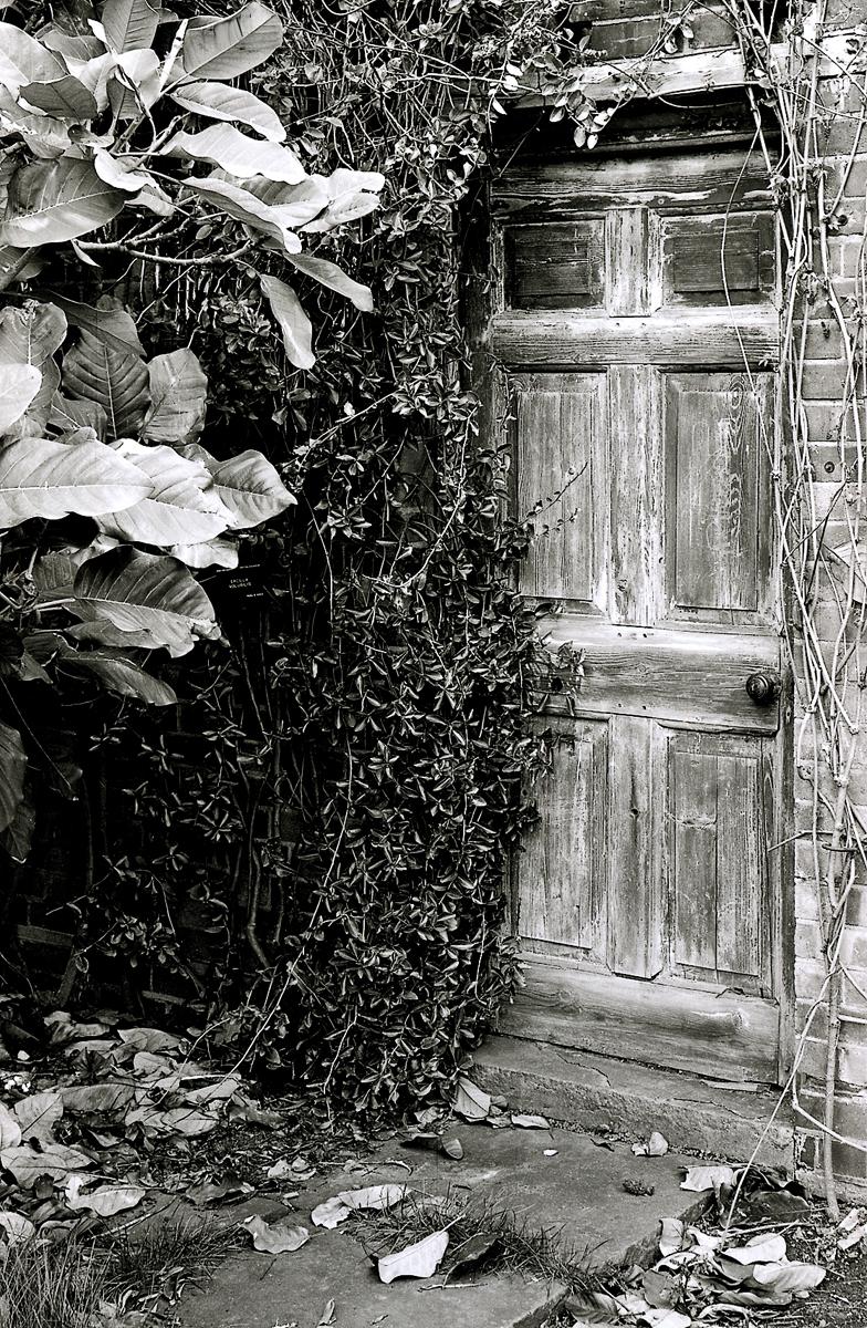 Doorinwall 2_lowres