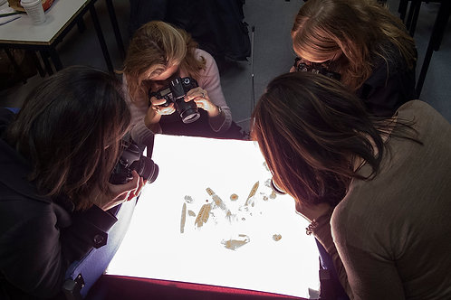 Photographic Lighting, Course