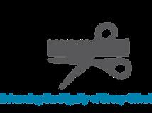 HSWT Logo - Light Blue 1080 x 1920.png