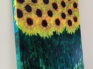 Sun Flower Explosion.jpg