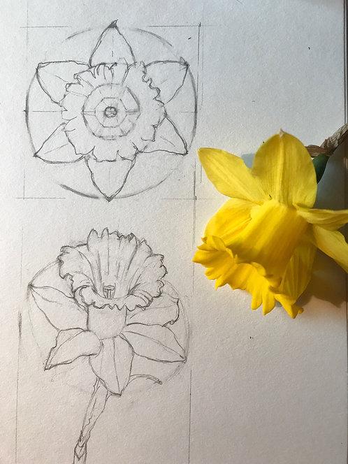 Nature/Garden Journaling