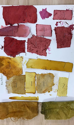 1808864_dyes-and-pigments_edited.jpg