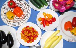 vetetables on white plates.JPG