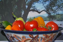 bowl by Lisa Knaus.JPG