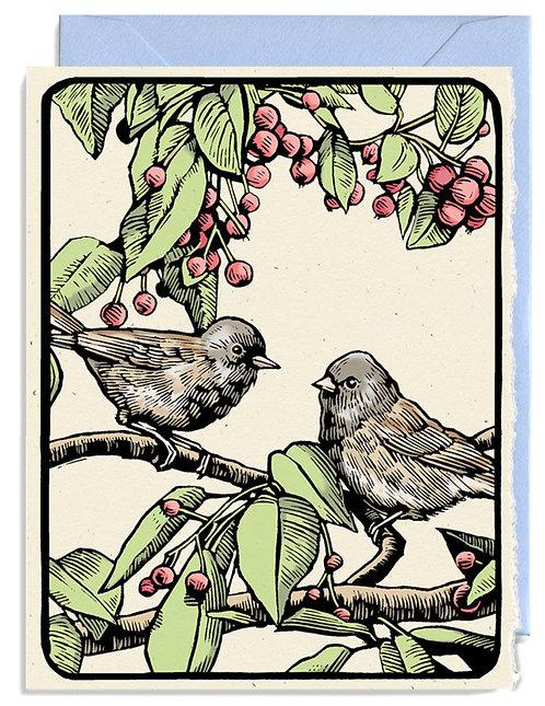 Hand Drawn Daniel Durkin Birds Card