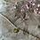 Thumbnail: Chaîne de cheville venti