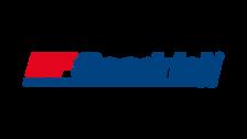 BFGoodrich Logo