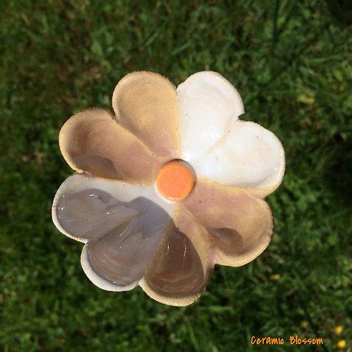 Mauve and white petals