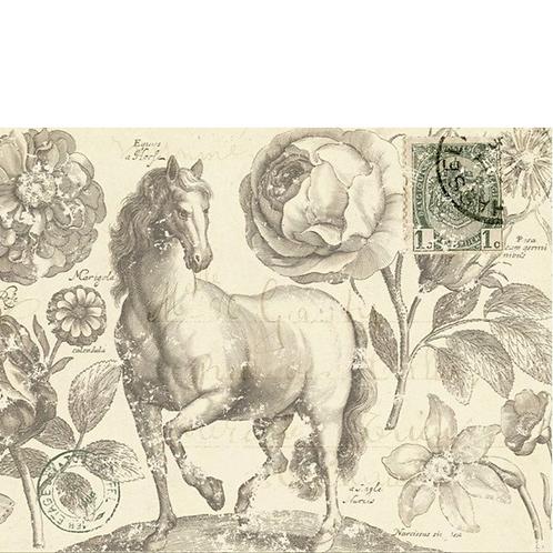 BOTANICAL EQUINE -Roycycled Decoupage Paper- Vintage Horse Floral Drawing Print
