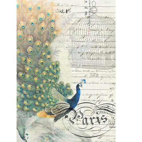 Roycycled Decoupage Paper - PEACOCK EPHEMERA - (LEFT) Painted Peacock Print