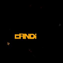 logo-rci-1024x1024