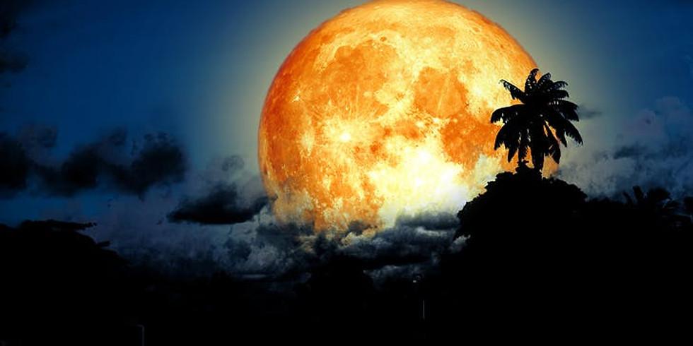 Sturgeon Moon Paint Night on the beach
