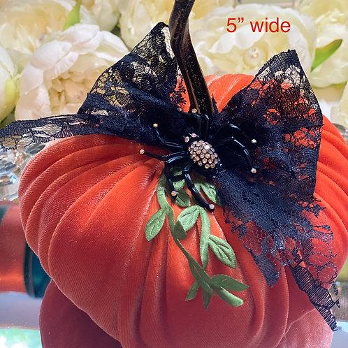 Orange Velvet pumpkin stem