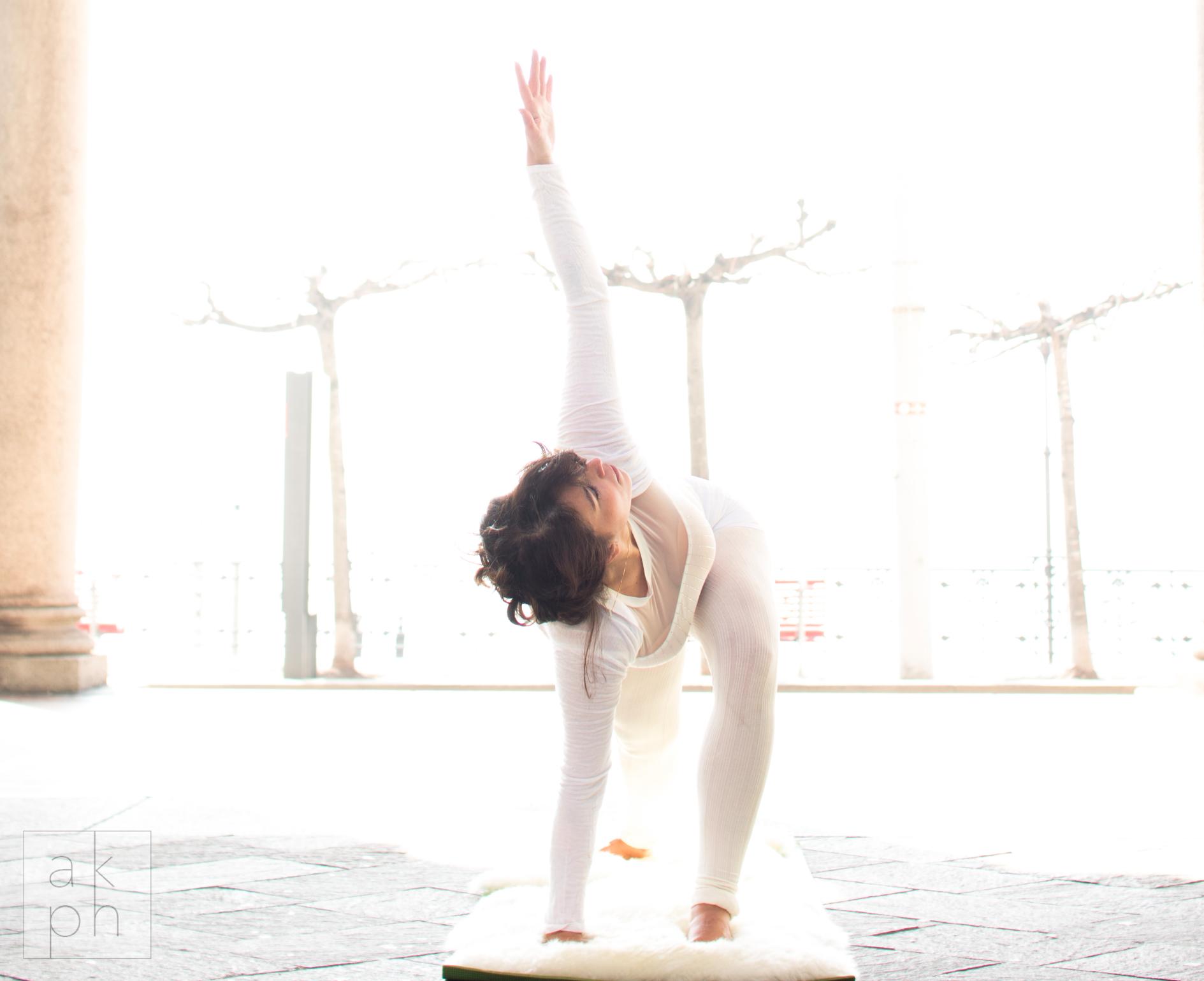 Yoga Vignasa flow