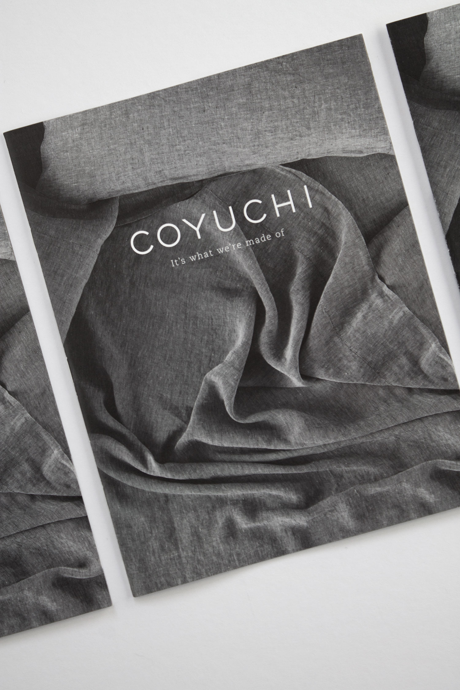 Coyuchi Printed Collateral