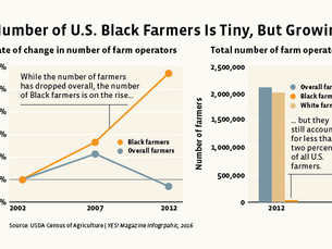 The organic movement must help dismantle racism in the food system
