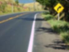 rodovia estaduais.jpg