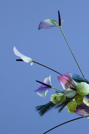Spacial Florals