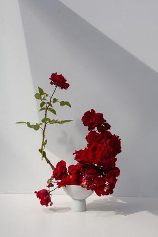 Distorted Romance