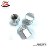 19 HEX closed end wheel nut