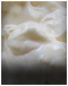 08-Condiments.jpg