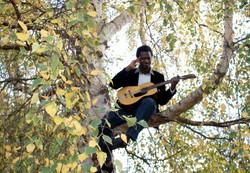 emmanuel buriez music guitare arbre