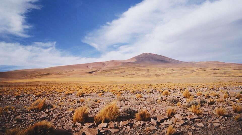 Paso de Jama, Chile - 2015 - Foto Raquel Bloomfield
