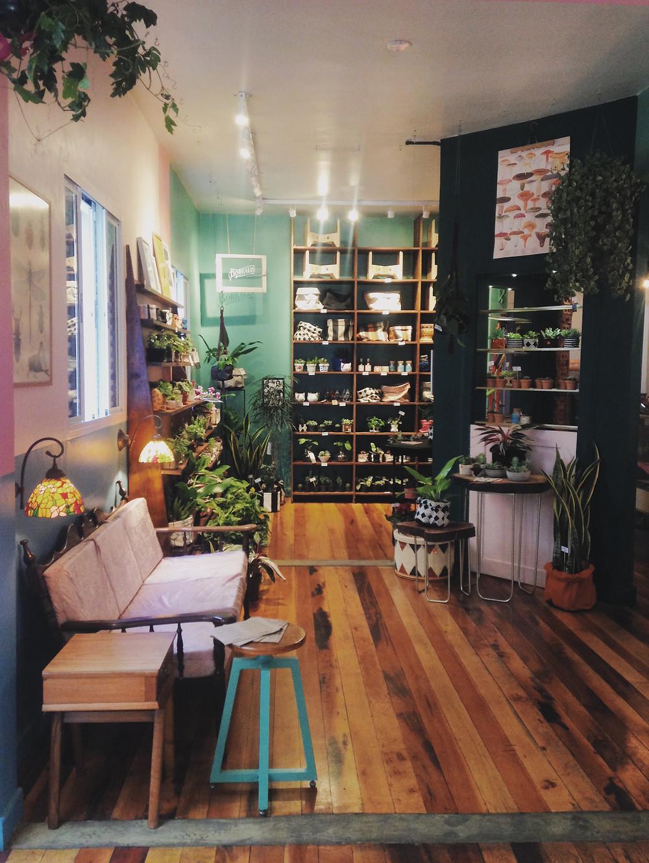 Botanique Café e Plantas