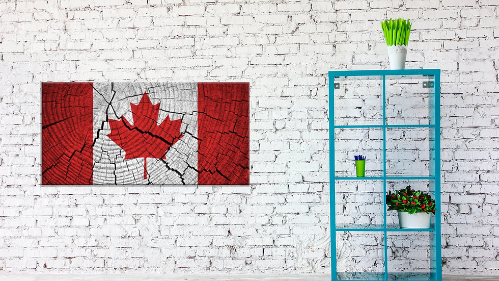 Giant Canadian Flag Canvas 48x24 Inches
