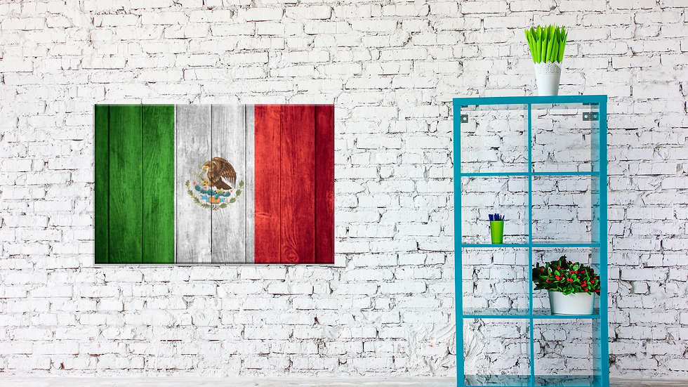 Giant Mexican Flag Canvas 42x30 Inches