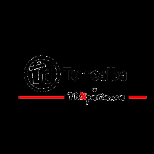 logo TDTorrealba.png