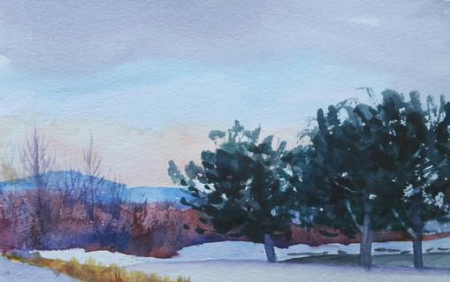 Late Winter, Genoa Nevada