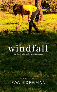 Revised Cover Art for Windfall thumbnail