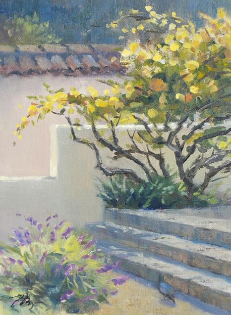 Adobe Roses, Old Monterey