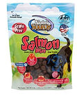 Nutri Source Dog treats salmon bits.JPG