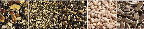 Variety of bird seeds.JPG