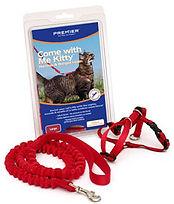 Pemier kitty harness.jpg