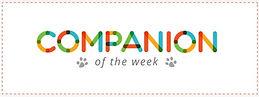 WDEZ Companion of the week.jpg