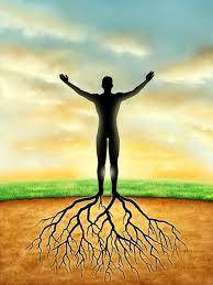 ancrage énergétique ancrage à la terre chakra racine racines chakra des pieds harmonisation équilibre sécurité paix divine éveil spirituel pleine conscience stabilité harmonisation harmonie roue énergétique centre énergétique terre mère noyaux de la terre racines de lumière
