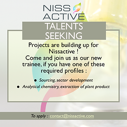 Talents seeking!