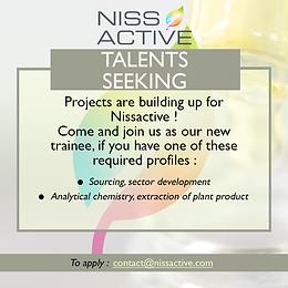 Talents seeking!