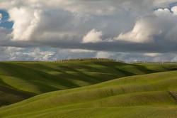 erikapoltronieri_Toscana