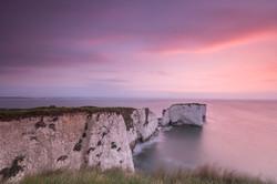 erikapoltronieri_Dorset