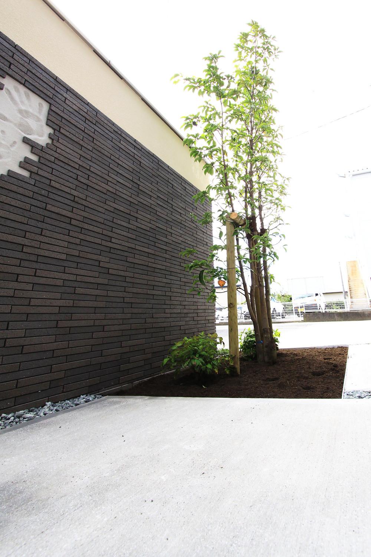 おしゃれな庭 デザイン住宅 一級建築士事務所