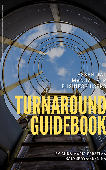 Turnaround Guidebook: Paperback