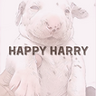 Happy Harry is an integrated company specializing in high-tech medicine, veterinary services, pet care, training, professional breeding, handling to provide dogs all that they need. www.hasheight.com #happyharry #dog #veterinary #petcare #dogtraining #dognutrition #raevskayarepninaannamariaserafima #аннамариясерафимараевскаярепнина #annamariaserafimaraevskayarepnina #raevskayarepnina #аннамариясерафимараевскаярепнина  #raevskayarepninaannamariaserafima #annamariaserafimaraevskayarepnina #raevskayarepnina #аннамариясерафимараевскаярепнина #раевскаярепнинааннамариясерафима #раевскаярепнина  #oxfordbusinessalumni #startedinoxford #saidbusinessschool #oxfordsbs #oxford #moscow #london #russia #uk #womanfounders #serialentrepreneur #womeninlaw #womeninbusiness #theuniversityofoxford #innovateuk