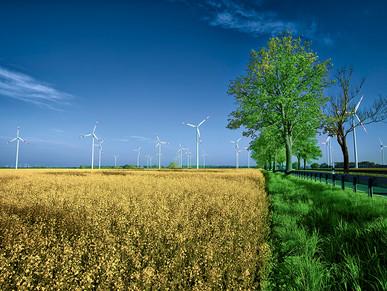 Windpark Kosenow