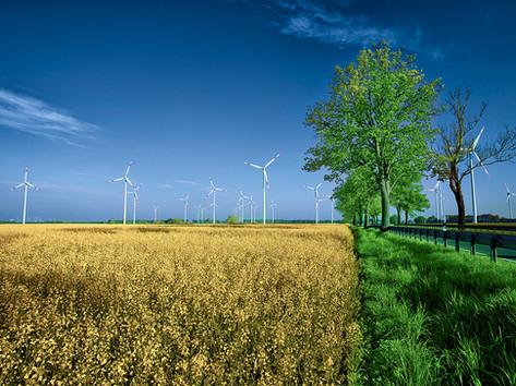 Wind farm Kosenow