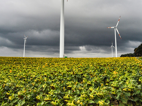 Windpark Dübrichen Priessen