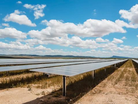 Solar Farm Campanario I